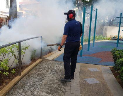 Pest Control Fogging